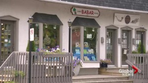 Babar bookstore to close