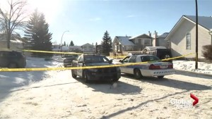 Calgary police investigating fatal shooting in Douglasdale