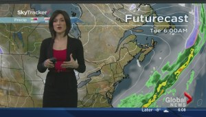 Local weather forecast: Tue, March 4