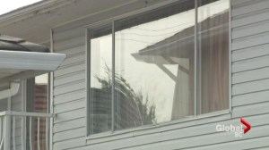 Childproofing your windows