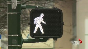 Plan  to reduce pedestrian fatalities
