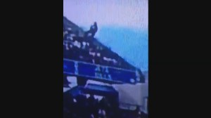 Raw video: Fan falls from stands during Buffalo Bills game