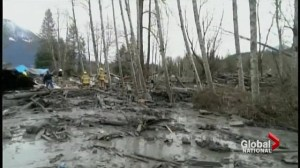 30 homes destroyed in Washington State mudslide