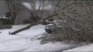 U.S. west coast hit by ice, rain and snow