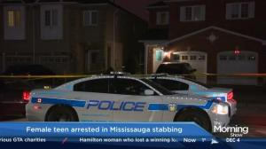Man dead, teenage girl in custody, after Mississauga stabbing