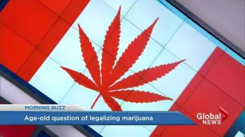 the debate over the controversial issue of legalization of marijuana Maryland, minnesota and new york are the most recent to join in 2014, and legislation to legalize medical marijuana in florida, ohio and pennsylvania is pending with policy changing rapidly on the medical applications of the drug on a state-by-state basis, we take a look at where the debate stands concerning the available evidence on medical.