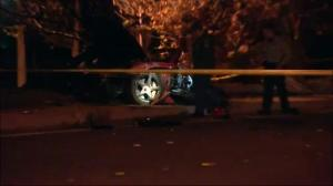 Scene of deadly crash involving actor Paul Walker