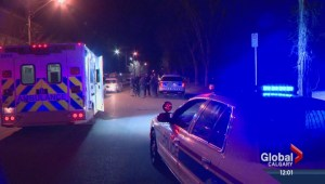 Son of senior Calgary Police officer suspect in stabbings