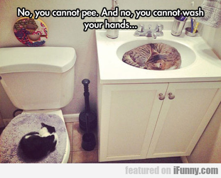 No You Cannot Pee. And No, You Cannot Wash...