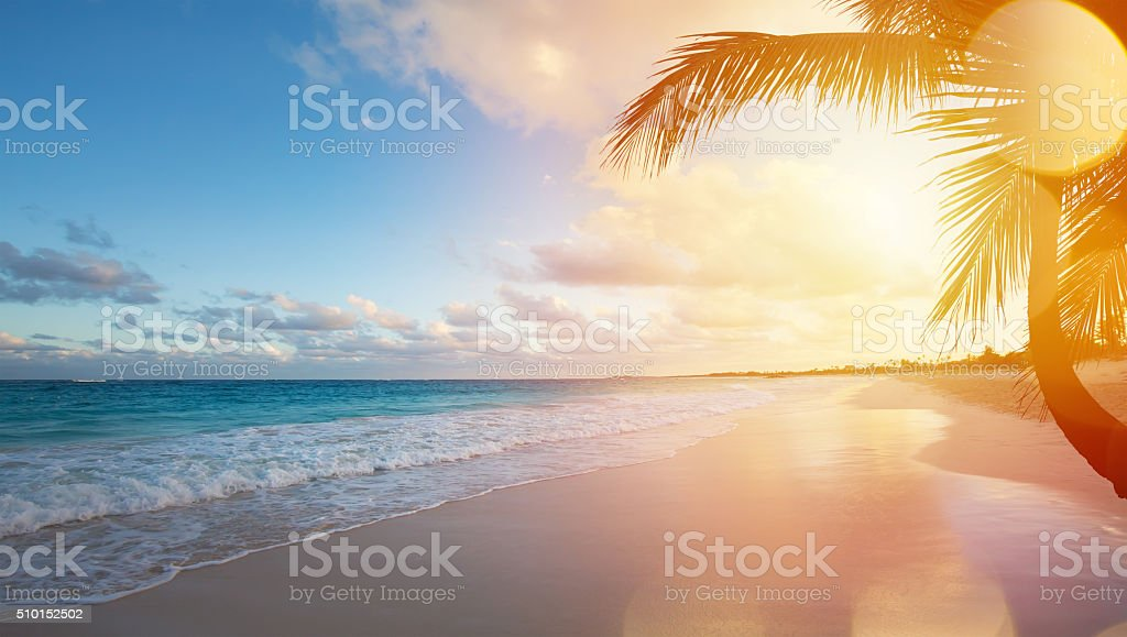 Royalty Free Beach Pictures  Images and Stock Photos   iStock Art Summer vacation ocean beach stock photo