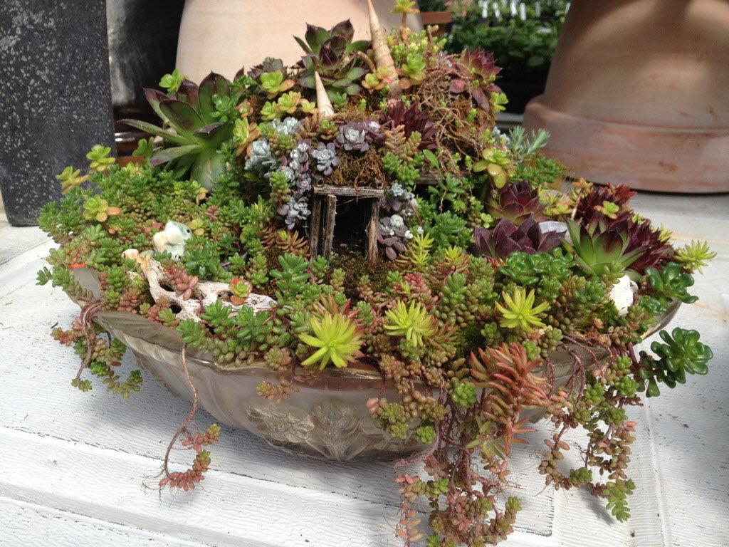 Fullsize Of Miniature Fairy Garden