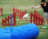 agility 2 _ ljusare