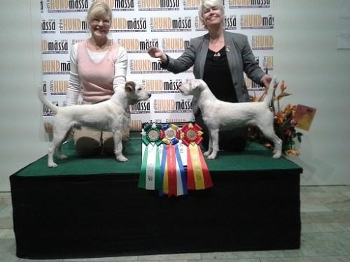 Nordisk Vinnare 2015
