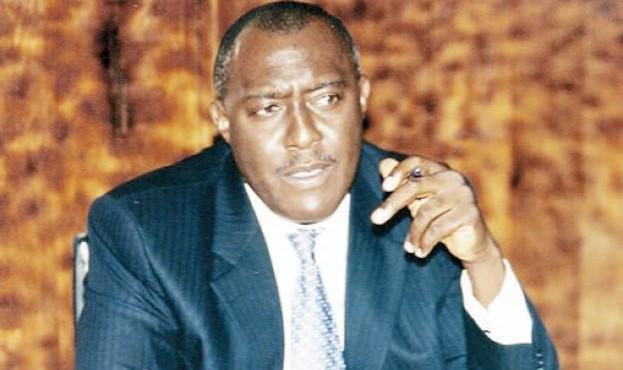 Olisa Metuh, Spokesman, PDP