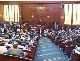 House of Representatives is trying to make sense of the police, SSS investigations