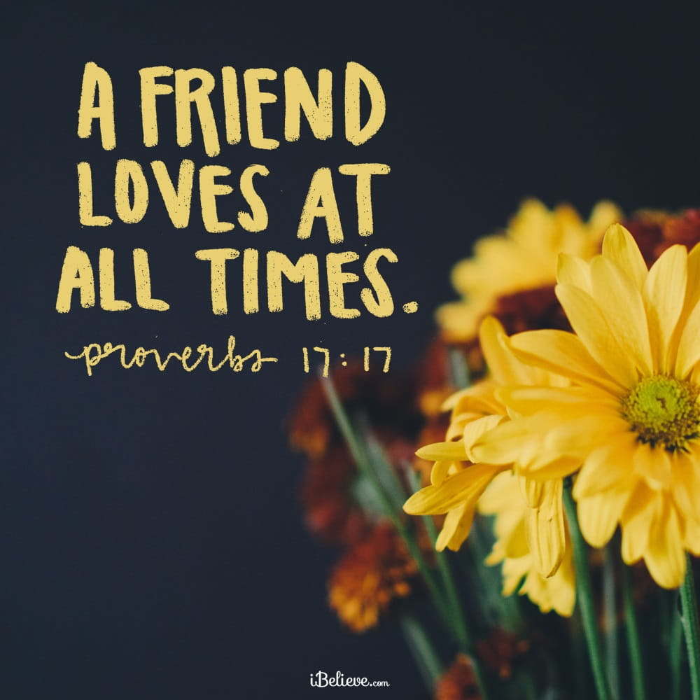 Invigorating Bible Verses On Friendship A Bror Is Born Marriage Bible Verses On Joy Friend Loves At All Life Having Good Friends Bible Verses On Joy inspiration Bible Verses On Joy