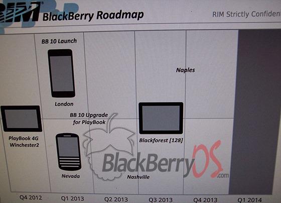 Rim-Roadmap-2013