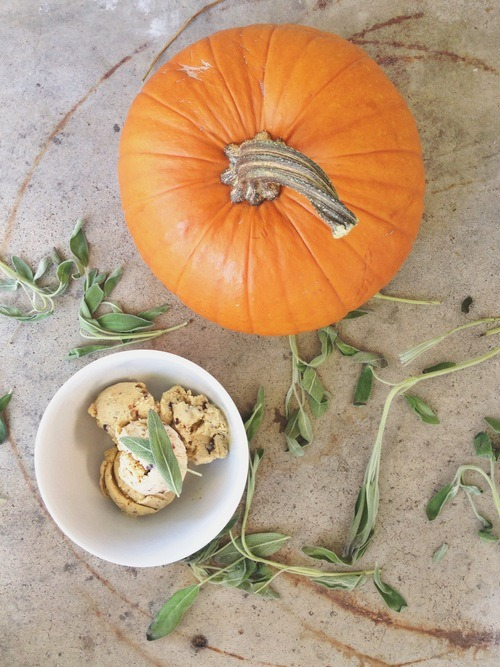 pumpkin puree (recipe to follow OR you can use 3/4 cup canned pumpkin ...