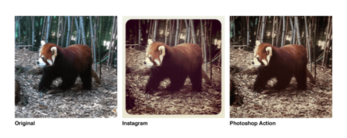 tumblr ll78r1RJd81qz7n3v Instagram Filters As Photoshop Actions [Download]