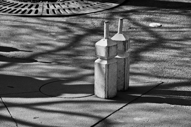 schack.foto:BelleBlue©Photo 2014