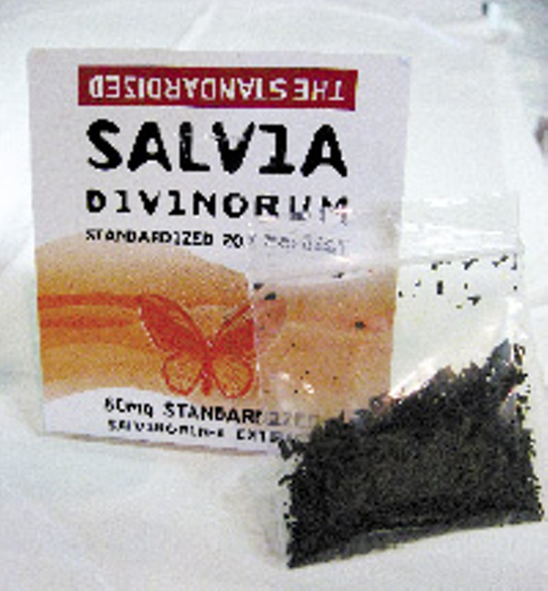 Large Of Where To Buy Salvia