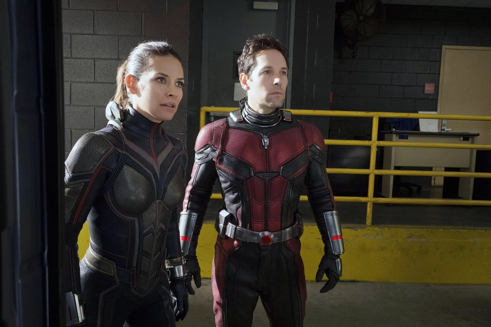 What Happens in the Ant Man and the Wasp Postcredits Scenes     ANT MAN AND THE WASP  from left  Evangeline Lilly as The Wasp
