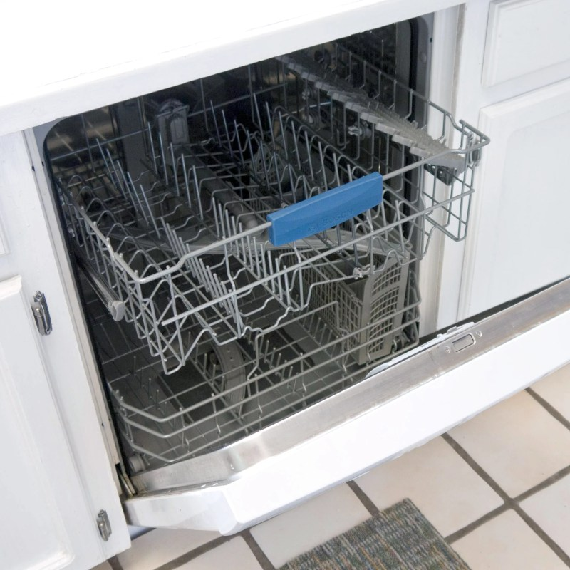 Large Of Mold In Dishwasher