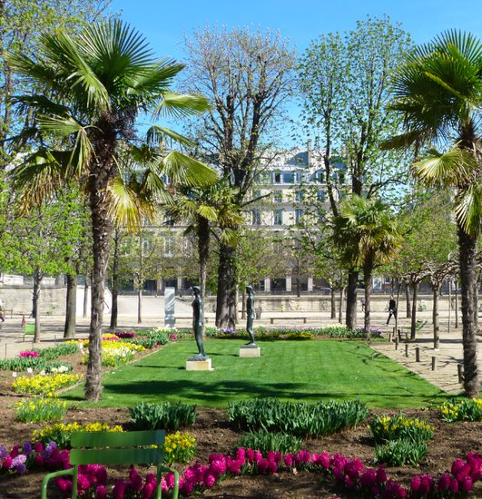 Spring in Paris - Tuilliers Garden
