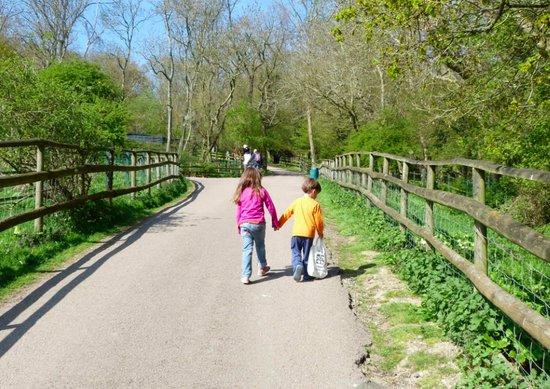 Port Lympne Safari Park in Kent, England