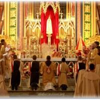 Horários da Santa Missa