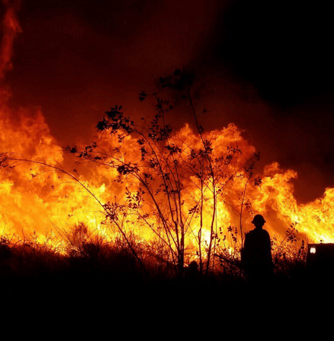 Thomas Fire at 89 percent containment   KCBX Fire crews work overnight Wednesday to reduce fuel loads