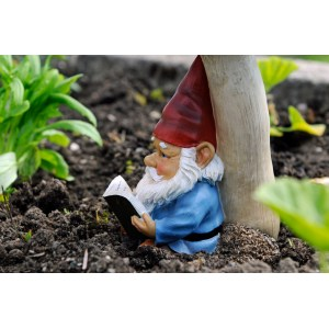 Tremendous You Need An Officer To Report Your Missing Garden Gnome Lollipops Fliers Left On House Lawns Claim To Be From Kkk Small Plastic Garden Gnomes Small Garden Gnomes Uk