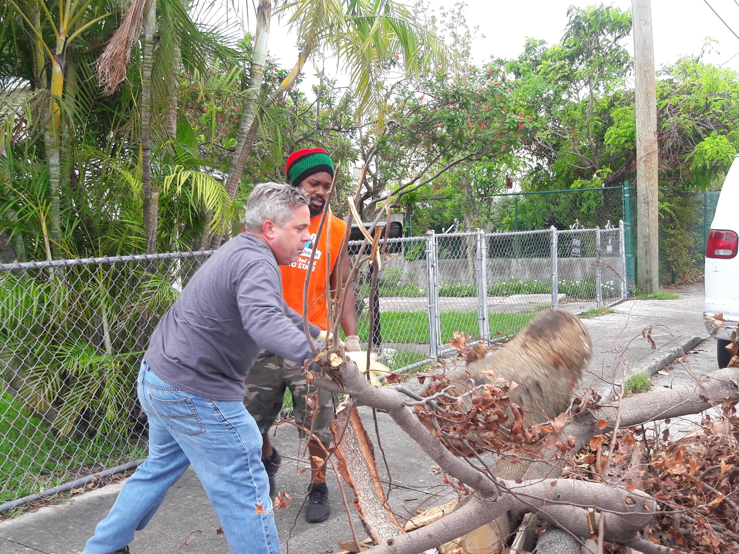 Phantasy Alittle Havana Volunteers New Hampshire Free Tree Removal Detroit Robert Ruono Francois Alexandre Work On Clearing Tree Branches Create Collective To Offer Free Tree Free Tree Removal houzz-02 Free Tree Removal