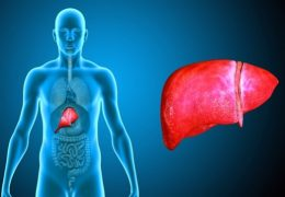 cannabis-and-liver-disease-3-599x358 - Copy