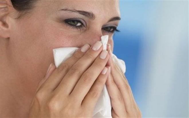gripi.jpg