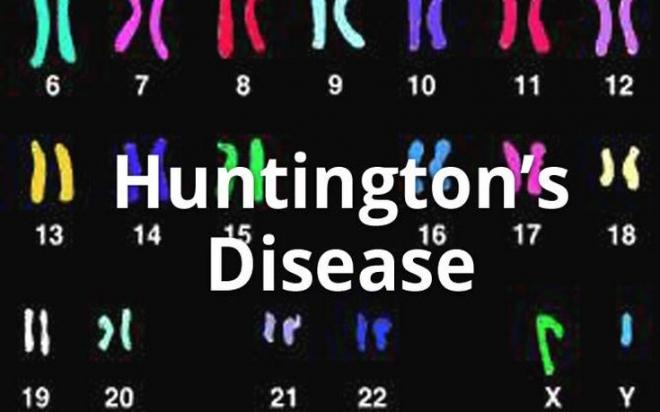 huntingtons-header-2.jpg