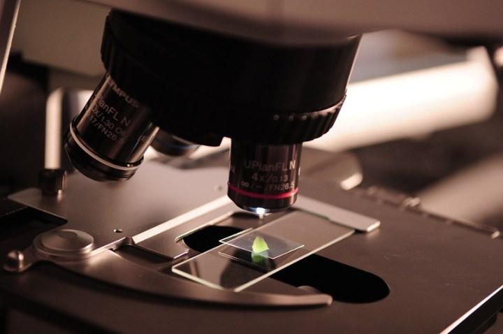 microscope-385364_960_720