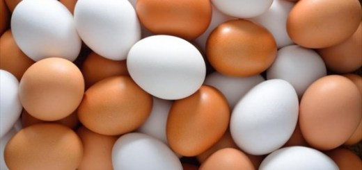 eggs-e1473835911725