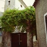 Saracena centro storico 19