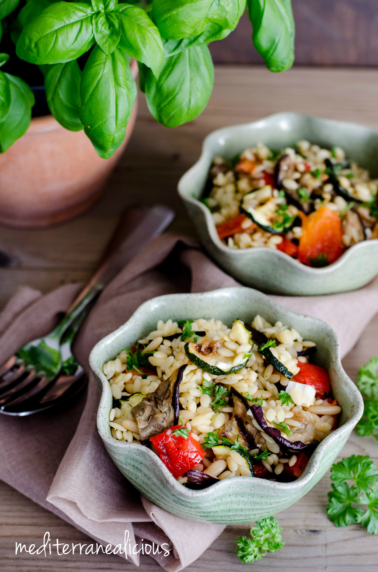 orzo and grilled roasted vegetable orzo salad grilled vegetable orzo ...