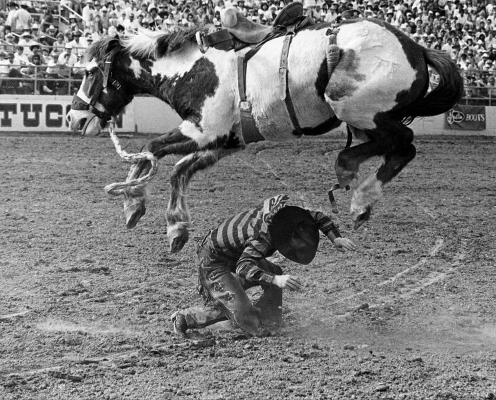Kevin Small under Cotton Eye. Tucson, Arizona. 1989. Louise Serpa :: Courtesy Tucson Rodeo Committee