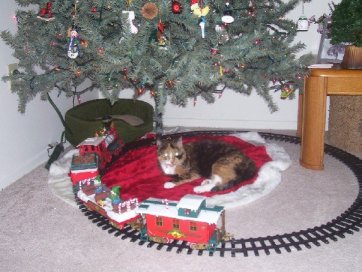 Jewels First Christmas Waiting for Tempations Treats for Cats