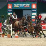 Leipzig - Partner Pferd 2015
