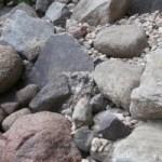 Steingarten verschiedene Steine