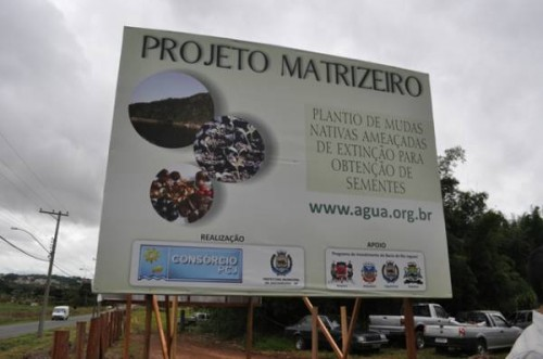 Projeto Matrizeiro