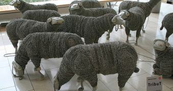 WAKE UP, SHEEP — tarde demais, drones pastoreando ovelhas