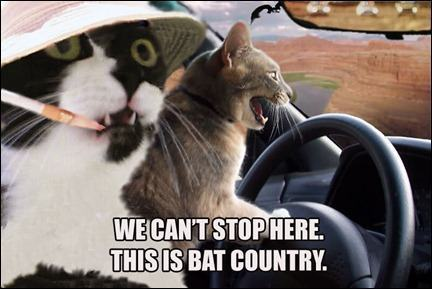 bat_country