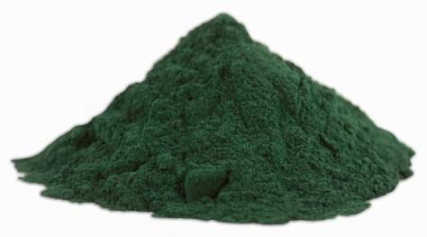 A Spirulina é uma micro alga