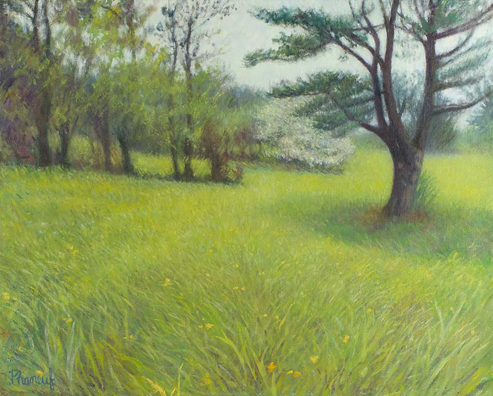 235-Meadows-in-Early-Summer-landscape-oil-painting-melody-phaneuf-960w
