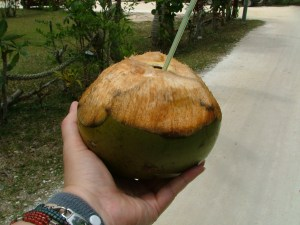 Fresh Coconut Water, Lifou-style!